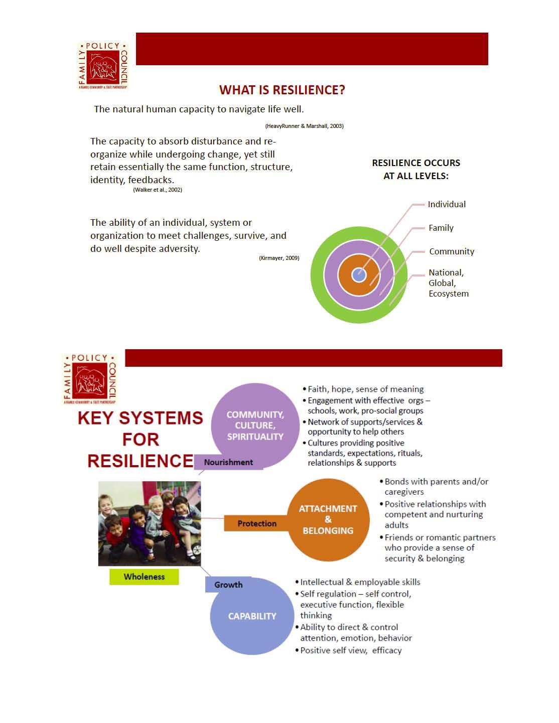 Resilience 2 slides